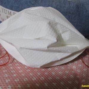 簡単手作り使い捨てマスク&換毛期