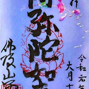 【京都】浄土宗特別大公開でいただいた「西向寺」のステキな【御朱印】
