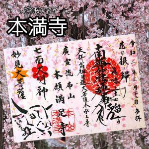【京都】今が見頃!! しだれ桜の名所「本満寺」のステキな【見開き御首題】~追加掲載版~