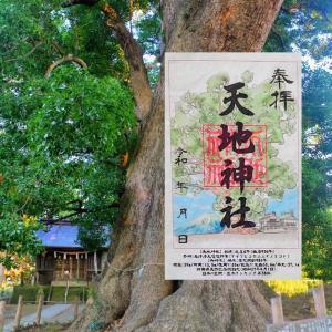 【静岡】天然記念物「大楠」がある「天地神社」でいただいたステキな【御朱印】
