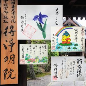 【京都】信州善光寺別院 得淨明院でいただいたステキな【月替わり御朱印】他~追加掲載版~