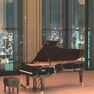 昨夜は、ピアノリサイタルに行ってきました。