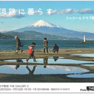 さっちゃんから皆さまへ「ニコンプラザ新宿 THE GALLERY2」で開催中です!~の巻