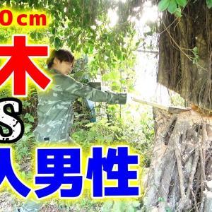 【DIYウッドデッキ #08】業者の邪魔をする大木を切り倒せ!【ハイサイ探偵団】