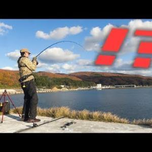 【離島サバイバル】堤防先端で最強アジの泳がせ釣りしたら一網打尽www・奥尻島4日目 #33【突撃!ヨネスケのツリタビch】
