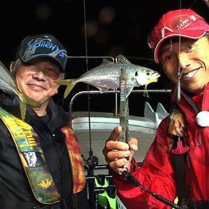 田辺沖でバチコンアジング 良型アジ連発で爆釣モード!【四季の釣り】