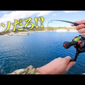 【九州釣り旅 #04・対馬】エギングしてたらまさかの魚が大量発生してて爆釣www【突撃!ヨネスケのツリタビch】
