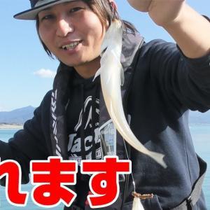 冬の水深2メートルでも美味しいアレが釣れるんです【釣りせんば】