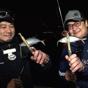 淡路島の洲本港でアジを狙う【四季の釣り】