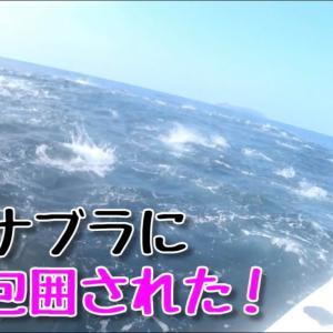 未知の海域で巨大魚のナブラに投げ込んだら大変なことに…【釣りみにまにも】