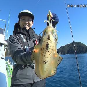 釣り百景 #330『厳冬の三重県尾鷲湾でイカ三昧!』