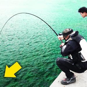 【ブロックの上で24時間釣り対決 前編】船で行く秘境ポイントは魚の宝庫だった【ハイサイ探偵団】