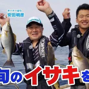 芦屋沖で旬のイサキを狙う!【釣り時季】