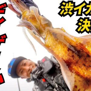 悪条件でも釣る!デイエギング術~湯川マサタカ【アングリングソルト】