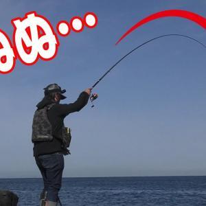 釣りキャンプで朝食用の魚を釣って喰う!【釣りせんば】