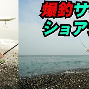 サーフショアジギ入門~新保明弘【アングリングソルト】