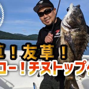 天草!友草!サイコー!チヌトップゲーム【釣り時季】