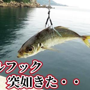堤防でアジの泳がせをしていたら突如とてつもない衝撃が竿を叩いた【釣りスギ四平】