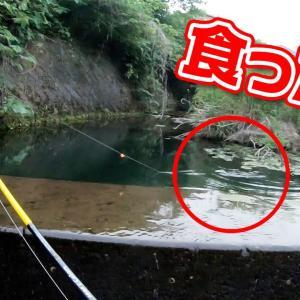 こんな所で釣りしたら…【釣りいろは】