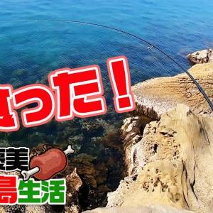 無人島キャンプ「食べ放題飲み放題」特別ご褒美プラン! #03【釣りいろは】