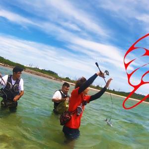 【伊是名島遠征2020 #01】神業!釣って逃げた魚を再度竿で捕らえる【ハイサイ探偵団】