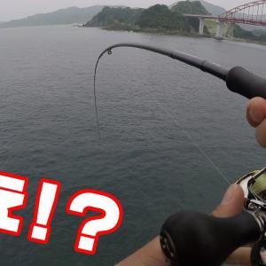 潮止まりに釣れた物が網に入らないレベル。【釣りせんば】