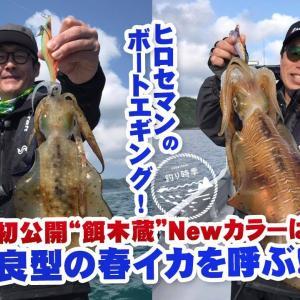 """ヒロセマンのボートエギング!初公開""""餌木蔵""""Newカラーは良型の春イカを呼ぶ!!【釣り時季】"""
