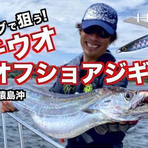 タチウオジギング・ヘキサーサーベルで狙う東京湾のドラゴン【Palms】