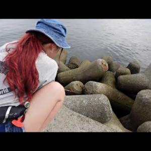 堤防から釣れる珍魚たち・・・【マルコス 釣り名人への道】