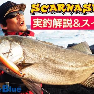 【スカーナッシュ140F】実釣解説&スイム動画!!【BlueBlueFishing】