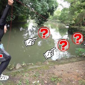 釣り針大量投下!!4連釣り針に現地で拾った餌を付けて池に落としたら…【釣りいろは】