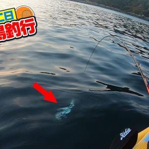 【爆釣】無人島カヤック・沖磯テントキャンプ生活 #04【釣りいろは】