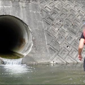 ドブ川排水で遊ぶ女がやばい。【マルコス 釣り名人への道】