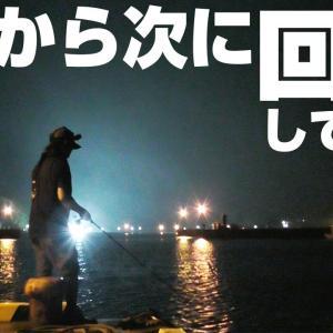 【釣りキャンプ編 #05】夜の防波堤に集まってくるアオリイカが簡単に釣れる【釣りせんば】