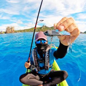 このルアー変な作りだけど色んな魚が釣れすぎて予想外の釣果に!【カミヤマライトゲーム】