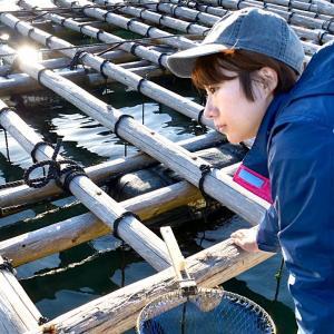 【釣り車中泊&N-VAN女子旅】私は諦めない、釣りの時間だ。何度でも何度でも【ちぬ子】