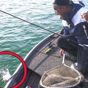 【最悪の事態】魚を釣り上げた直後…【俺達。秦拓馬】