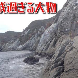 断崖絶壁に張り付いて赤貝の剥き身を落とした瞬間大物が落ちパクして振り回された!【釣りみにまにも】