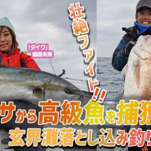 壮絶ファイト!? ヒラマサから高級魚を確保せよ!玄界灘落とし込み釣り!【釣り時季】