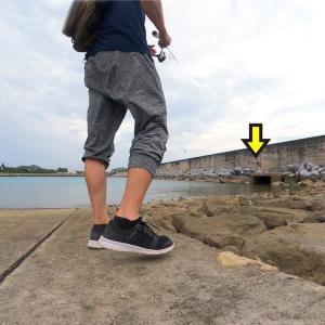 近場の港。石積みや水路など魚がいそうな場所にルアーを投げると…【カミヤマライトゲーム】