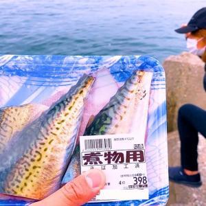 いつもとは一味も二味も違う穴釣り【それでも釣りに】