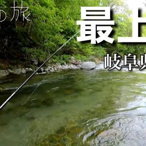 【ここにしかいない魚】川の一番上流域に潜む魚を短時間で狙う。【水の旅】