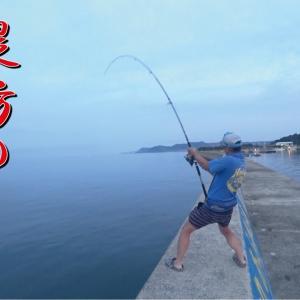 【堤防の夢】想定外の大物ヒット!網に入らなかったので…【釣りみにまにも】