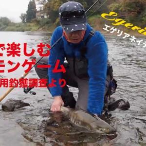 エゲリアネイティブで狙うサケ釣り/鮭有効利用釣獲調査in鮭川【Palms】