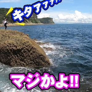 【世界遺産】男2人釣り旅2泊3日豪華プラン【釣りいろは】