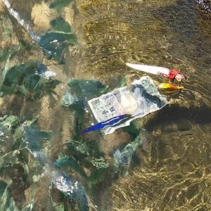 【お金釣り】水路に潜む大型魚の釣りをしていたらまさかのビッグマネー!【釣りスギ四平】