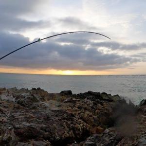 【離島生活】台風後、巨大魚が喰い付き40分間アタリが止まらねぇ!!【カミヤマライトゲーム】