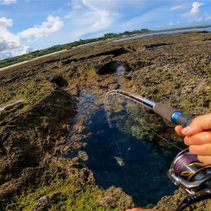 【徳之島編 #03】これぞ究極の穴釣り。潮が引いてできた穴にキビナゴをぶっこむと…【突撃!ヨネスケのツリタビch】