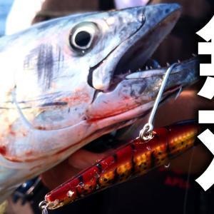 期待のルアー「魚極ペン」を投げ倒してみたら、予想を遥かに超える活躍をしてくれました。【きじはたこ】