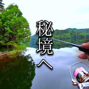 【怪魚ハンター単独釣行】大自然と向き合う最高のひと時。とある魚を求めて北の秘境へ行ってきました【TSURIHACK TV】